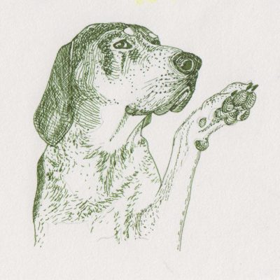 Green Dog, painting by Alessandro Bruno.